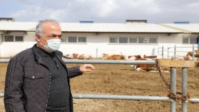Photo of Atatürk Üniversitesinden gıda ve hayvancılığa bilimsel yaklaşım
