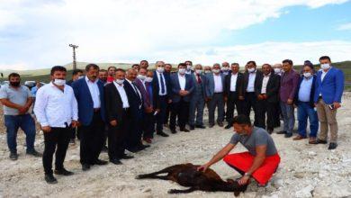 Photo of Çat Belediyesi bir ilke imza attı