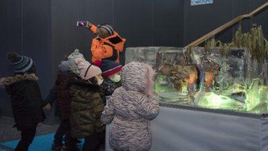 Photo of Minik sanatseverler Ata Buz Müzesini ziyaret etti