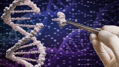 Photo of Kovid-19 Sürecinde Genetik Faktör Önemli